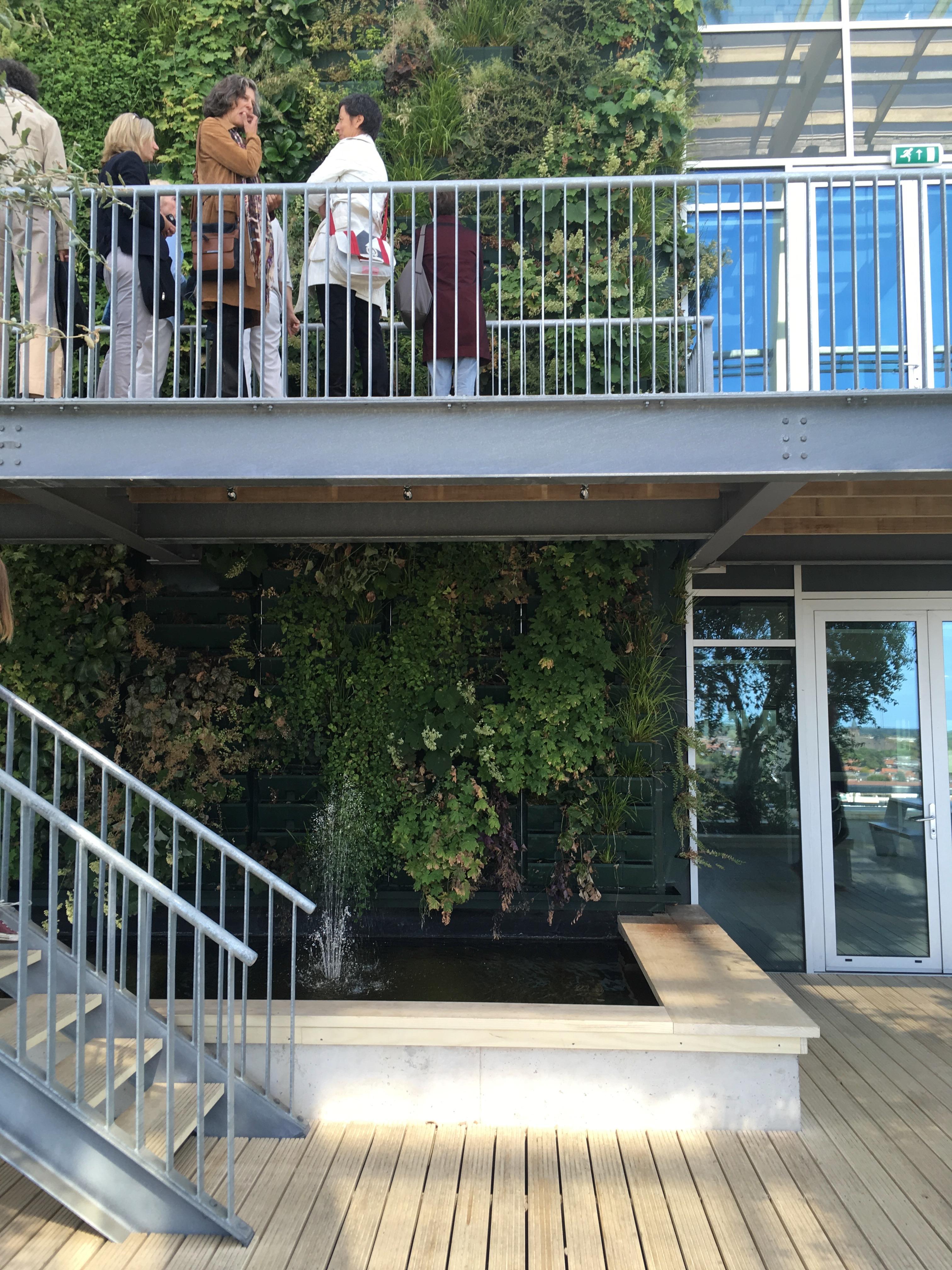 architektinnen initiative Exkursion Venlo Dachgarten